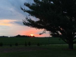 Zach farm1 sunset